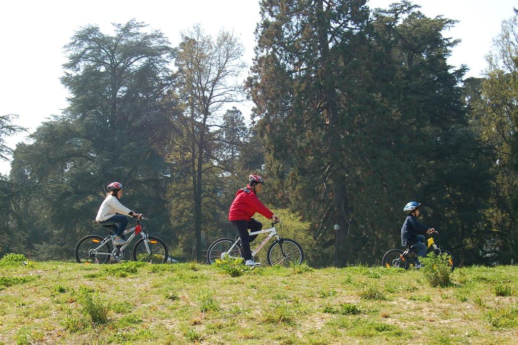 Bicicleta en família